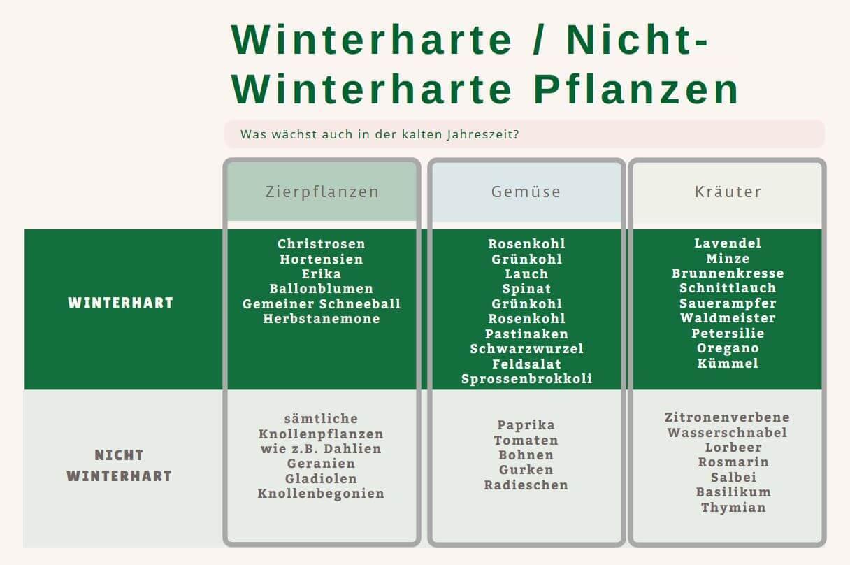 Pflanzen für den Winter